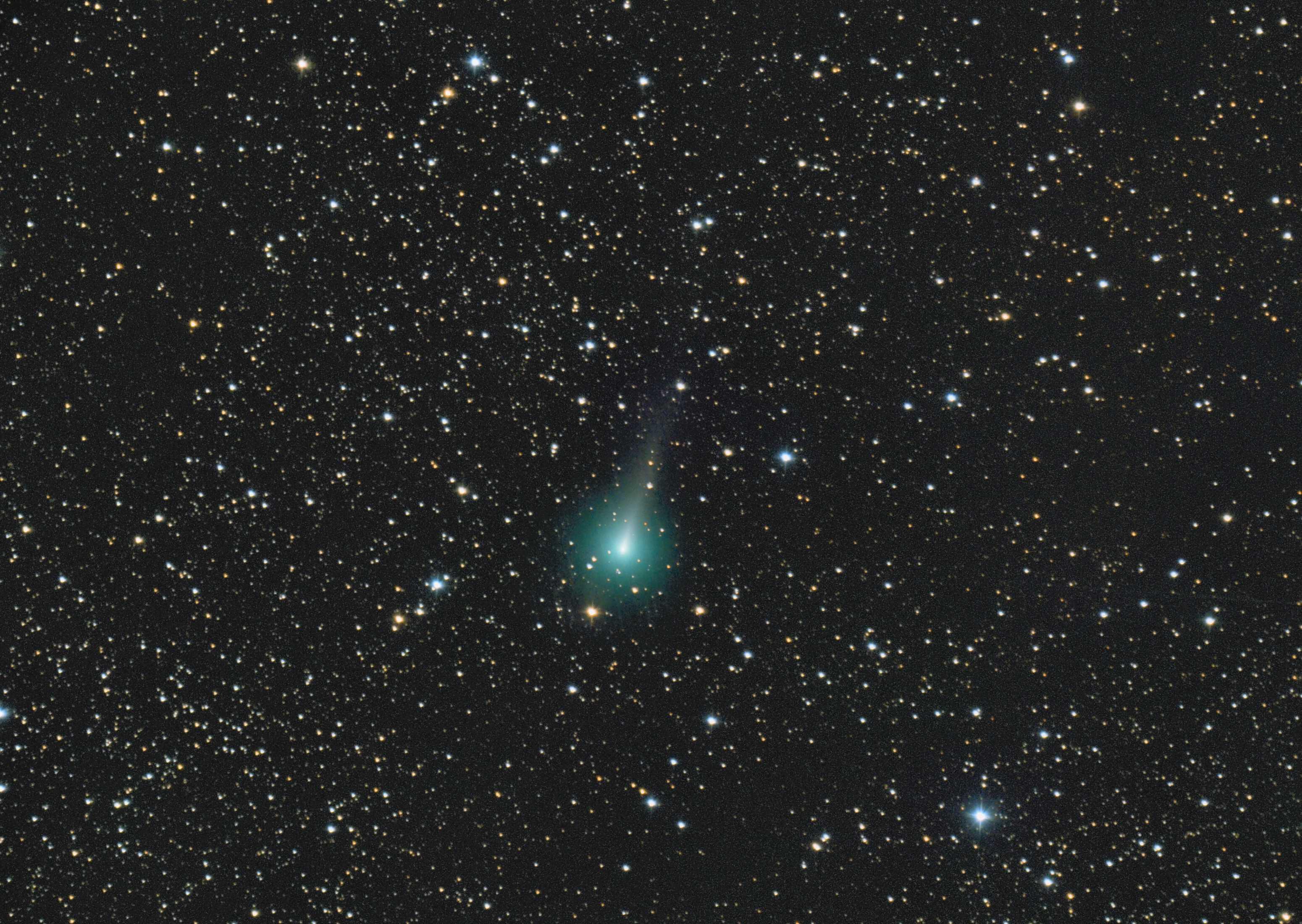 Comet C/2019 Y1 Atlas